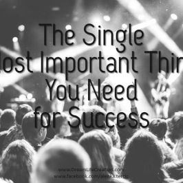 The Single Most Important Thing You Need for Success